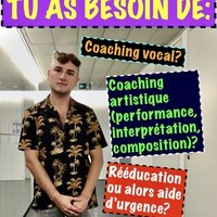 Singer + Voice Teacher (chanteur + coach vocal) actuellement en cours de formation!